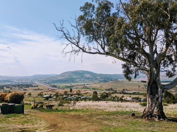 An idyllic view over the Derwent Valley near Brighton. A large gum tree is in the foreground. Paddocks and low hills covered in trees extend into the distance